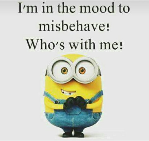 Am_in_the_mood_to_misbehave_who_is_with_me.JPG