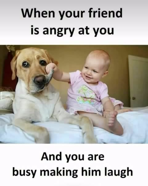 When_your_friend_is_angry_at_you.jpg