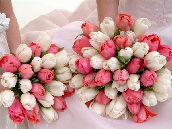 22flowers.jpg