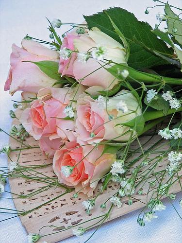 24flowers.jpg