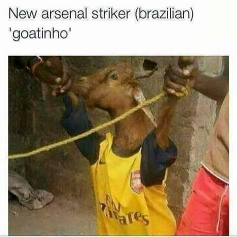 New_Arsenal_striker_Goatinho.jpg