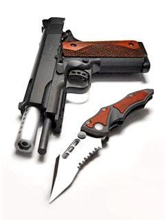 Guns_and_War03.Jpg