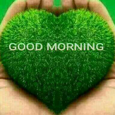 Good_morning_1.jpg
